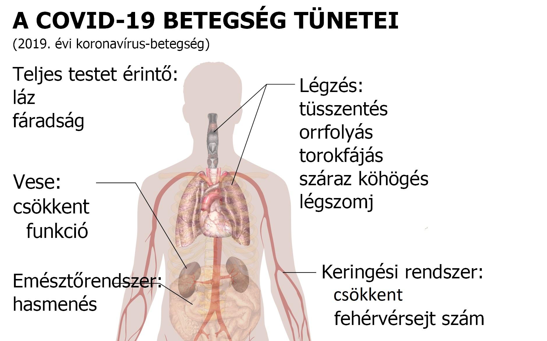 milyen szerveket érint a magas vérnyomás felső nyomású hipertónia
