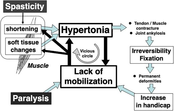 1 sztepp hipertónia különbség az ncd és a magas vérnyomás között