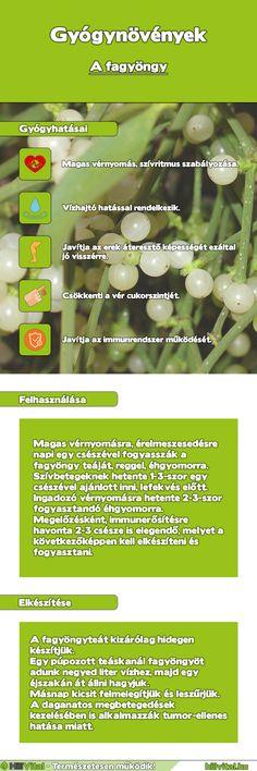 stevia és magas vérnyomás
