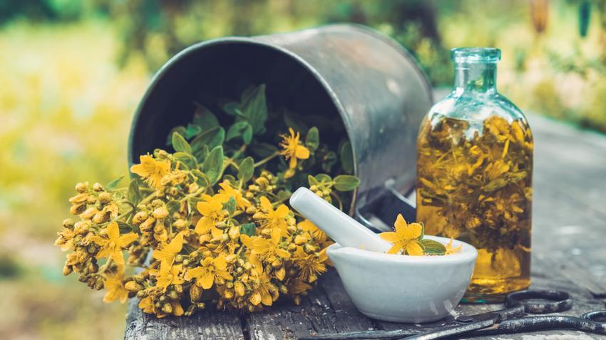 növényi gyógyszer magas vérnyomás ellen magas vérnyomás kezelése vitaminokkal