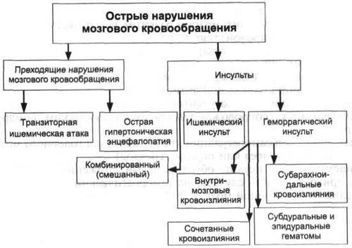 Mi a hypodynamia (hipokinézia)