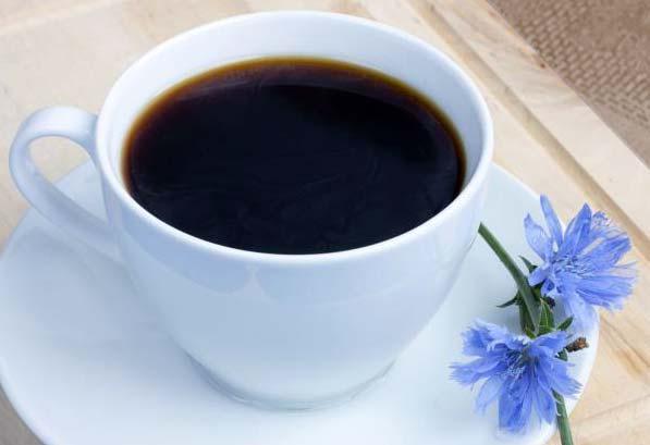 Cikória: nem csak kávénak jó - HáziPatika