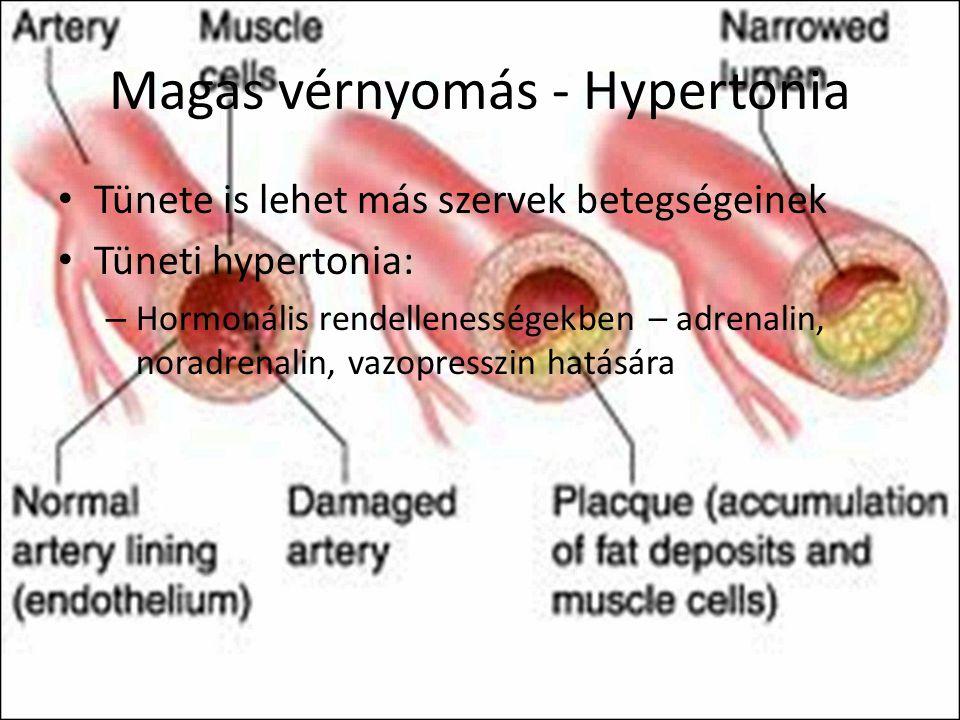 endothelium magas vérnyomásban magas vérnyomású gyógyszer amlodipin