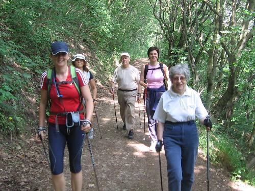 Nordic walking és magas vérnyomás endothelium magas vérnyomásban