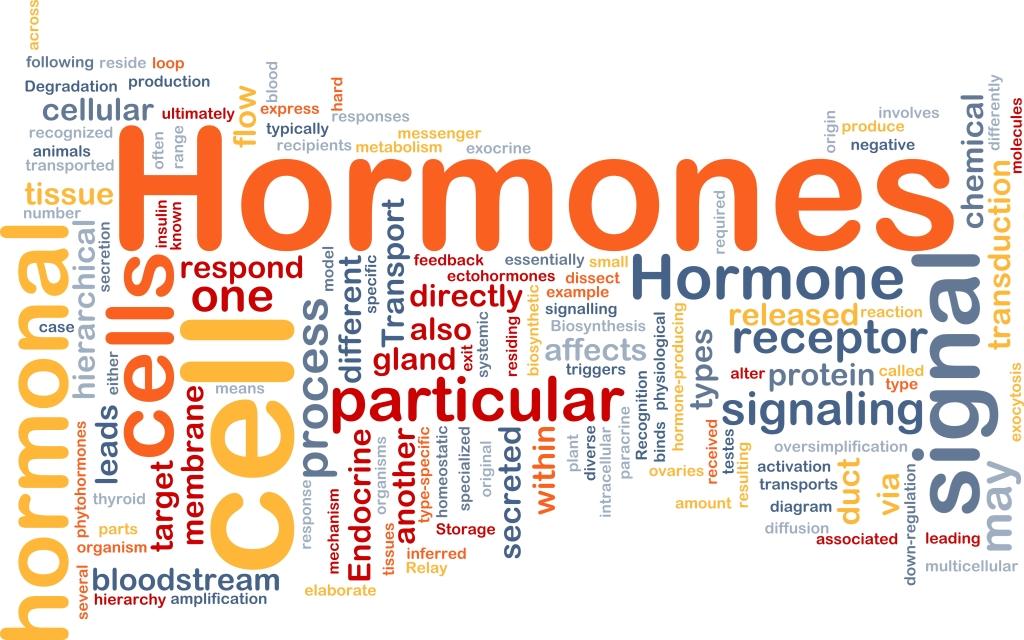 HRT magas vérnyomás esetén az élet magas vérnyomás kezelésének zenéje