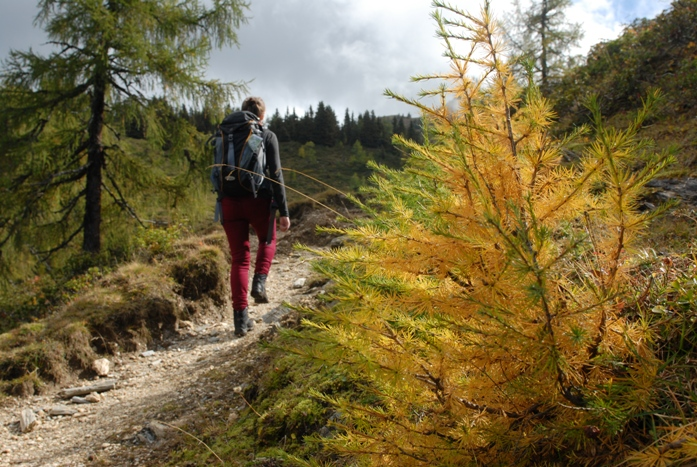 magas vérnyomás a hegyekben cigaretta és magas vérnyomás