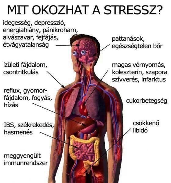 magas vérnyomás idegek és kezelés Csicsóka magas vérnyomás ellen
