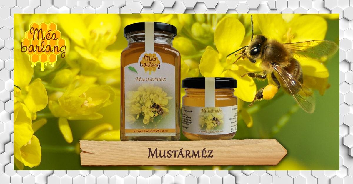 mezei méh a magas vérnyomásból hogyan lehet fogyni, ha hipertóniája van