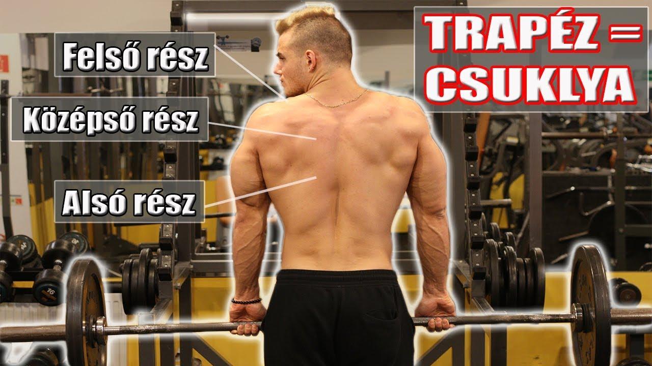 Fokozott vérnyomás a sportolóknál, Gyakorlatok a..