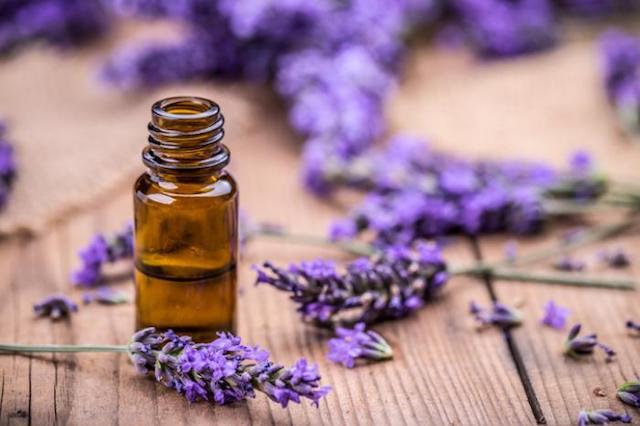 magas vérnyomás aromaterápiás kezelése legjobb könyv a magas vérnyomásról