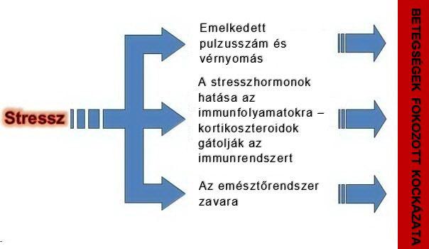 magas vérnyomás pszichoszomatika okai