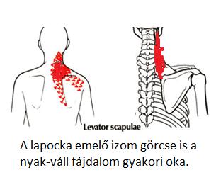 ha a fej fáj a hátsó részén, magas vérnyomás vagy
