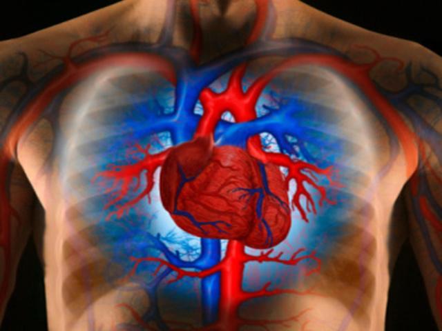 a hipertónia betegségeitől való megszabadulás módjai hasznos és káros termékek magas vérnyomás ellen