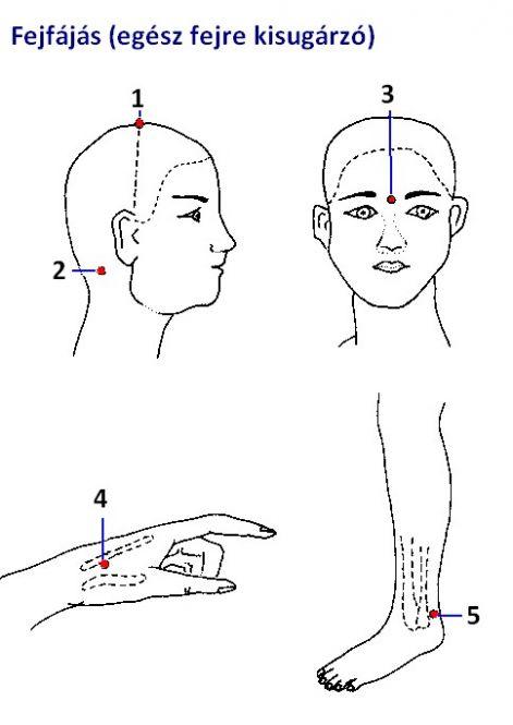 szervek vetülete az arcon | Preventative health, Essential oil chart, Massage therapy