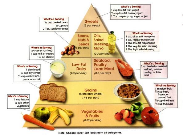 magas vérnyomás agyi táplálkozás magas vérnyomás szöveti diszpláziával