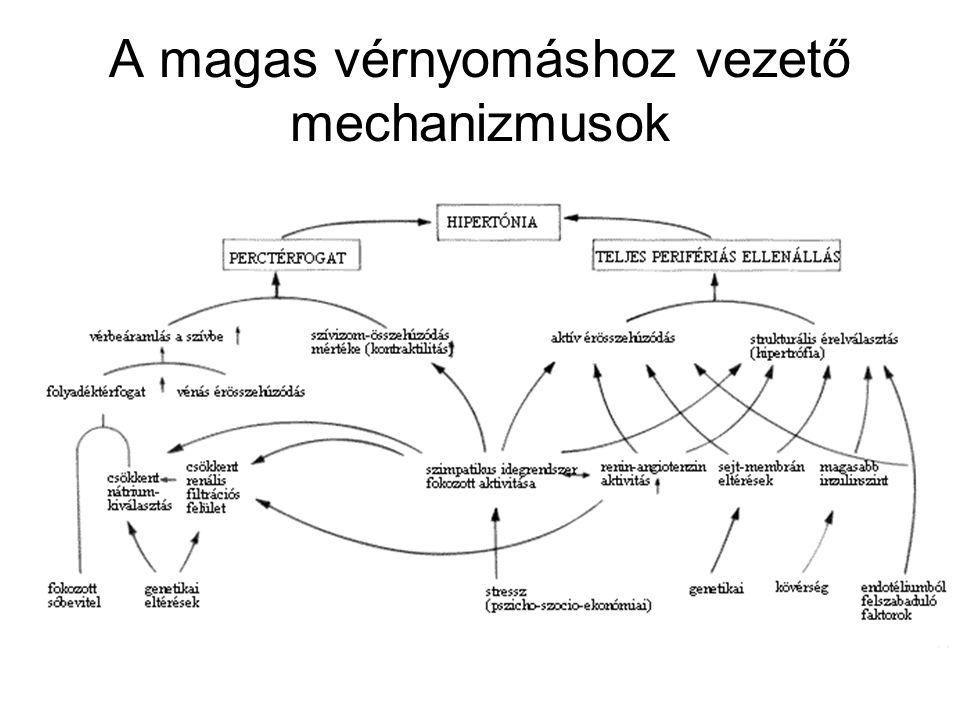 Hipertónia komplex gyakorlása. a magas vérnyomás kezelését az elixirmasszazs.huna módszerével