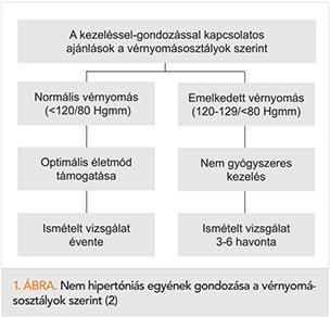 a test viszketése magas vérnyomással mik a hipertónia típusai